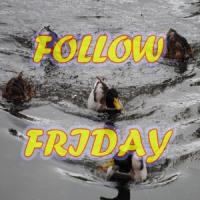 Follow Friday: Rarasaur