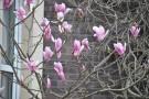 Spring 18