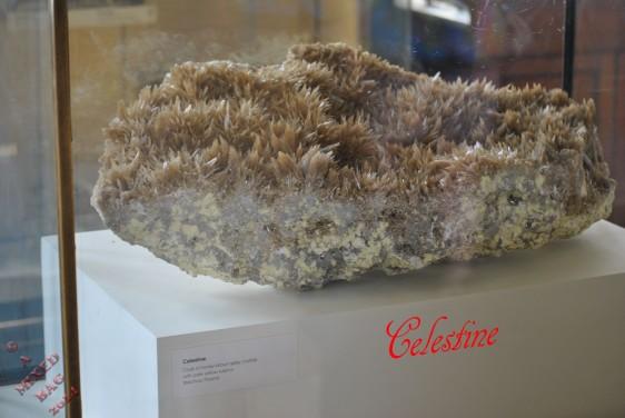 Celestine (1)