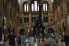 Dippy - final photo on exit