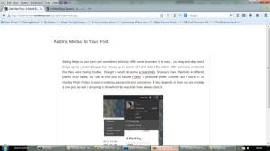 Blogging Pt 2