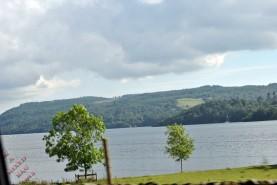 Cumbria (102)