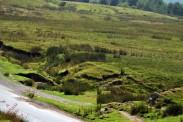 Cumbria (20)