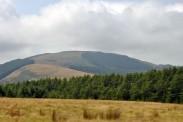 Cumbria (21)
