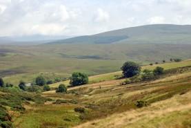 Cumbria (24)