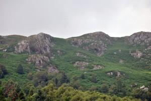 Cumbria (28)