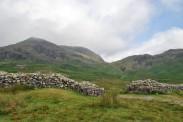 Cumbria (48)