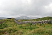 Cumbria (49)