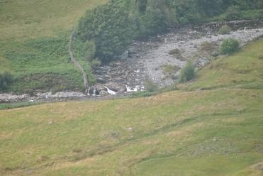 Cumbria (56)