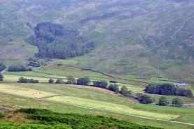 Cumbria (67)