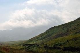 Cumbria (82)