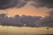 Dawn (2)