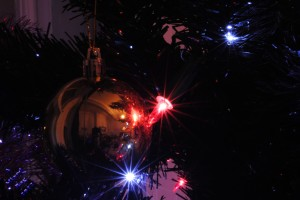 December #5